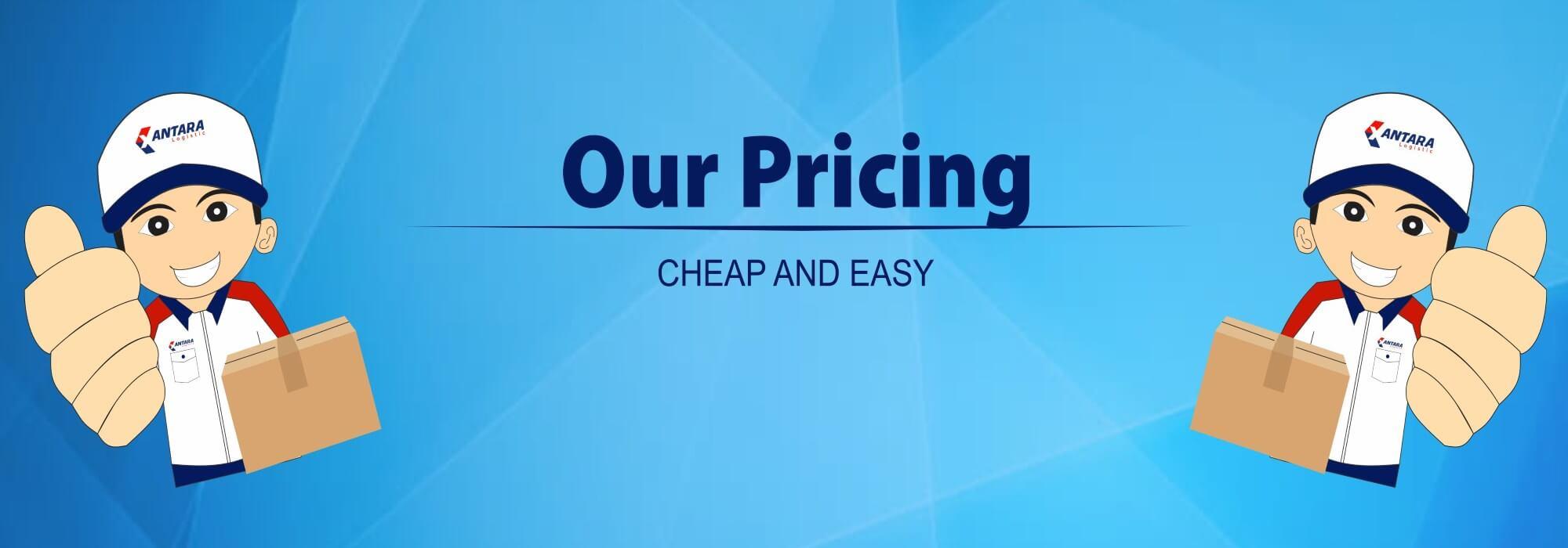 pricing (2)